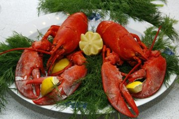 Pak Anggota DPRD DKI, Makan Lobster Kagak Usah Belagu!