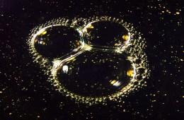 Menikmati Gerhana Mickey Total