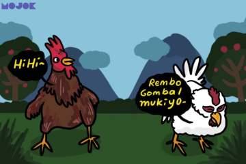 manfaat ayam kegunaan ayam revolusi 4.0 moeldoko ayam stunting wali kota bandung kecanduan hape mojok.co