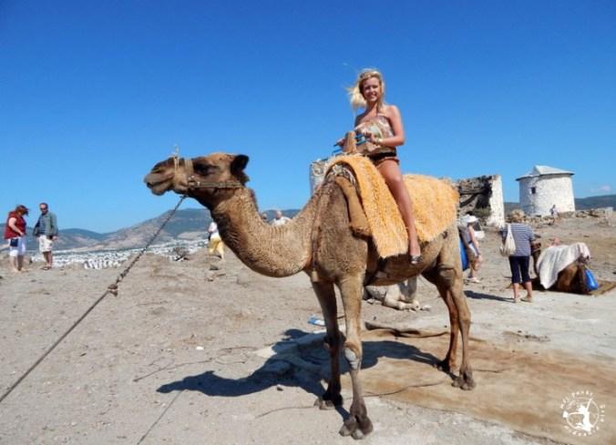 Mój Punkt Widzenia Blog - wycieczka do Bodrum, przejażdżka na wielbłądzie