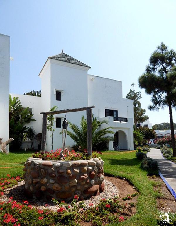 Mój Punkt Widzenia Blog - ogród na terenie hotelu, Maroko