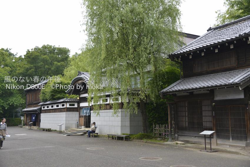 20120531_tokyotatemonoen23