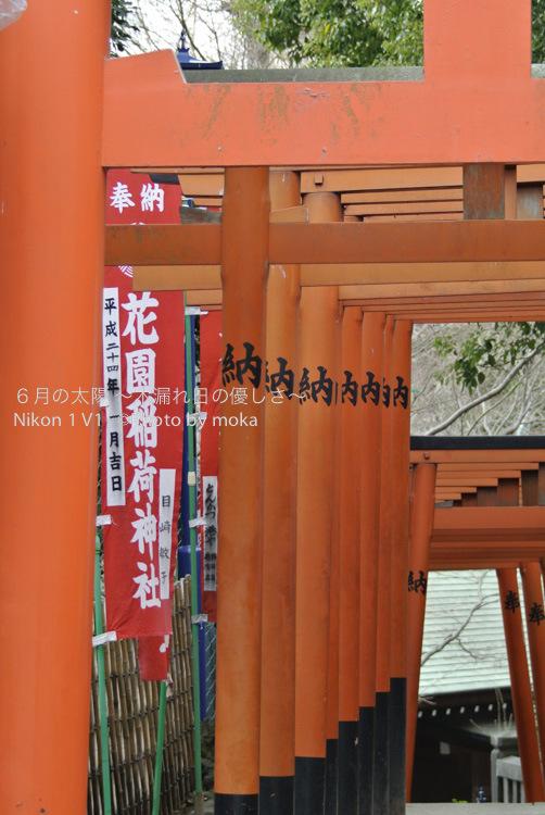 [6]上野公園、花園稲荷神社