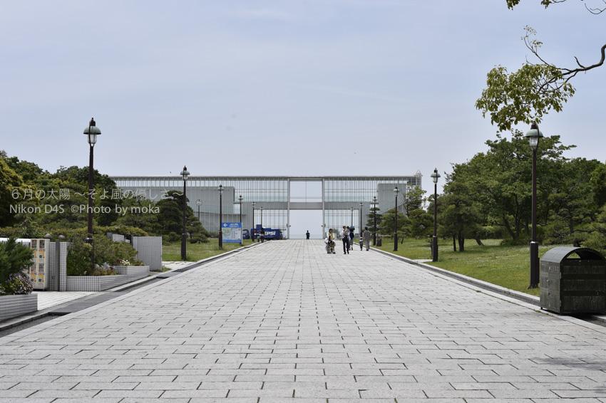 20140523_kasairinkai-park63