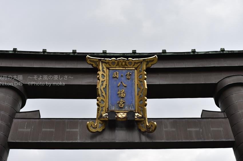 20140623_tomiokahachiman18