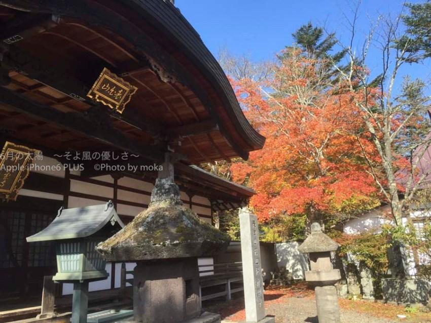 20151024_karuizawa24