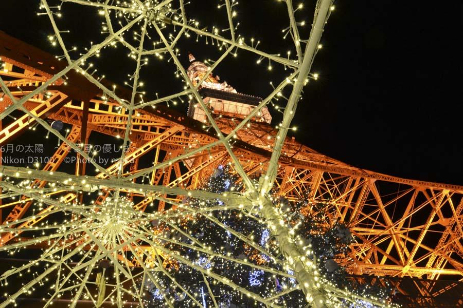 [6]冬の夜を彩る、東京タワーとクリスマスツリー
