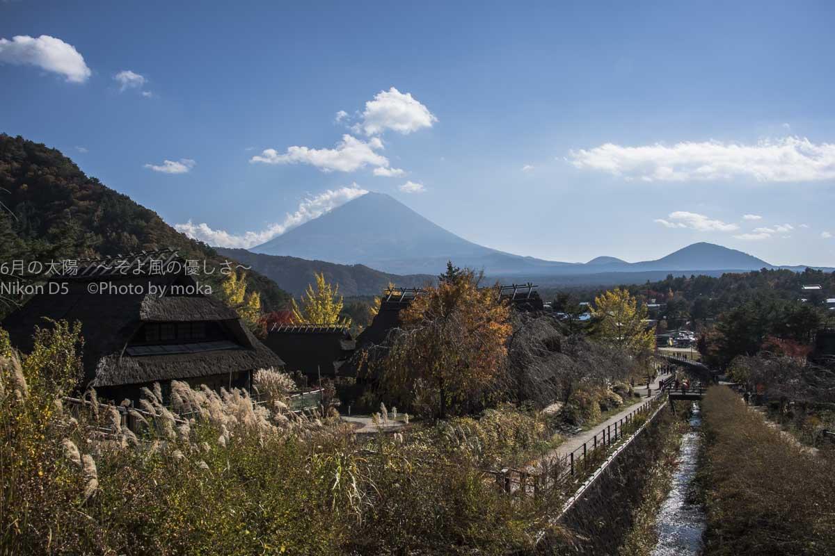 [6]秋の紅葉と、富士五湖の西湖と、世界遺産の富士山