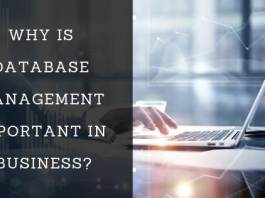 importance of database management