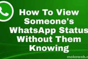 View people's Whatsapp status without them knowing