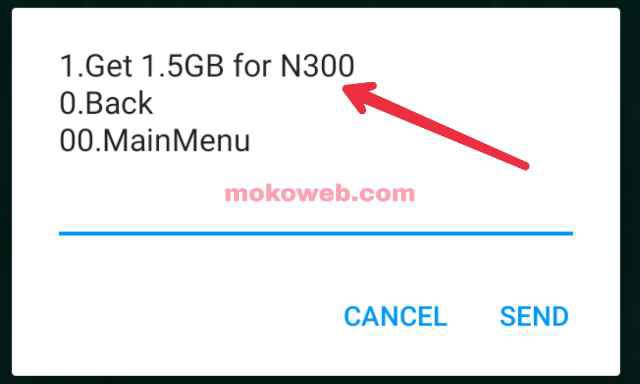 MTN 1.5GB for N300