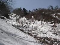 雪崩の箇所
