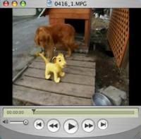 実験動画1