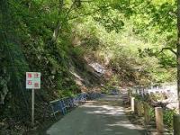 一ノ倉への道路