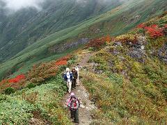 山頂付近の紅葉状況