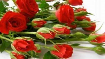 Дарите женщинам цветы песня скачать бесплатно
