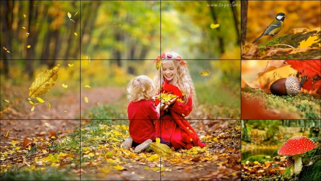 Текст песни - Осень в лесу
