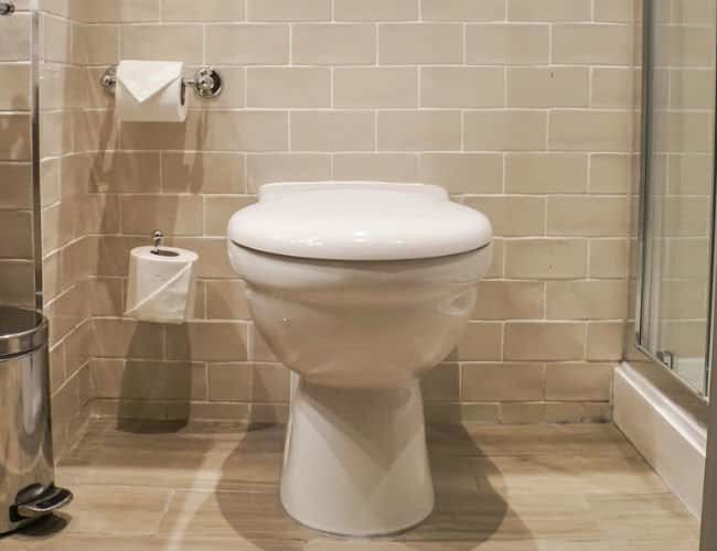 Black Mold In Toilet Bowl And Diabetes Facts And Myths Mold Homes