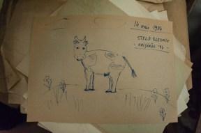 Vacile lui Glebus Sainciuc. FOTO: Sandu Tarlev