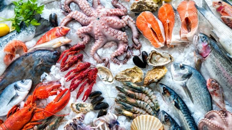 Da febbraio il Mercato del Pesce di Porta Palazzo rinasce: nuovi stand, un  ristorante e street food