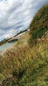 High tide, a nice view of what was once the A27 bridge
