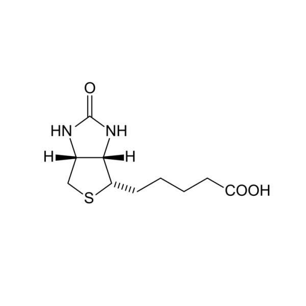 Monoclonal Mouse Anti-Biotin Antibody