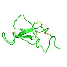 Agouti-Related Protein