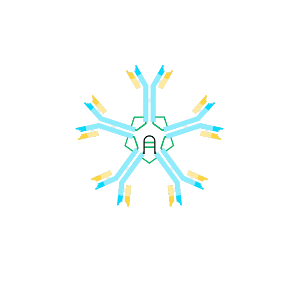 Biotin anti Human IgM Antibody (μ-chain specific)