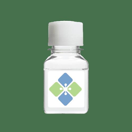 Secondary Antibody Dilution Buffer