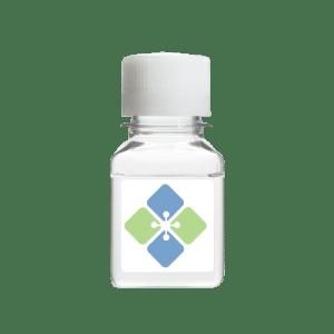CIAP Reaction Buffer (10X Solution)