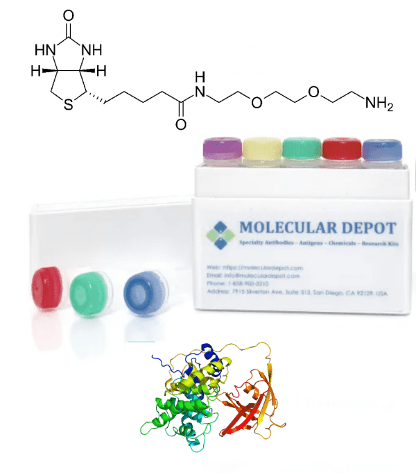 UltraFast Antibody and Protein Biotinylation Kit (mg scale, 10 reactions)