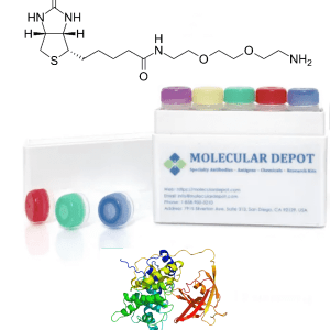 UltraFast Biotinylation Kit (microgram scale, 5 reactions)