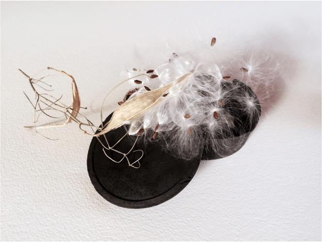 Cheri Ibes, Milkweed