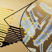 Küçük Güneş Panellerini Kaplayan Cyborg Bakteriler Temiz Yakıtın Geleceğini Değiştiriyor