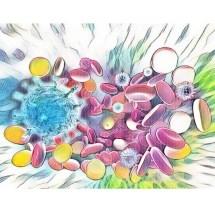 Bağışıklık Hücreleri, HIV gibi Enfeksiyonlara Karşı Bir Silah Oldu