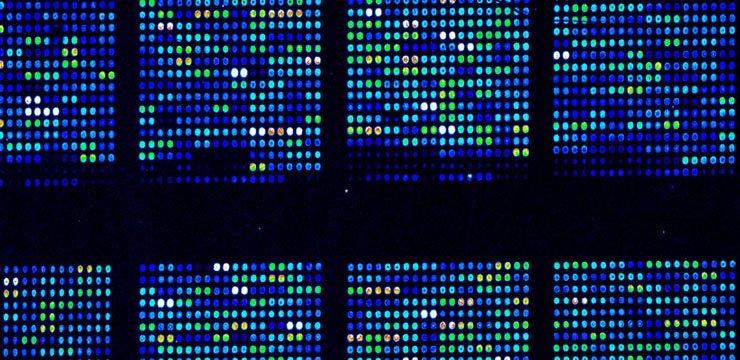 Biyoenformatiğe Giriş ve Biyolojideki Uygulamaları