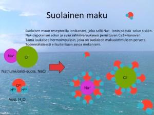 Vesiliuoksessa ruokasuolan natrium- ja kloridi-ionit erkanevat toisistaan ja kellivät suolameressä vesivaipan ympäröiminä ilman kumppaniaan.