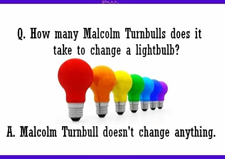 malcomturnbull embarrassment marriageequality reginageorge sheep