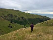 Scarborough Hill Reserve, Christchurch, NZ