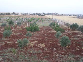 Non-farm at Bethany Retreat Center