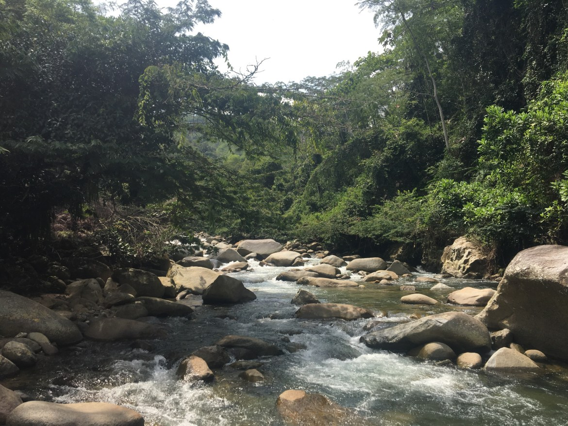 A Colombian river