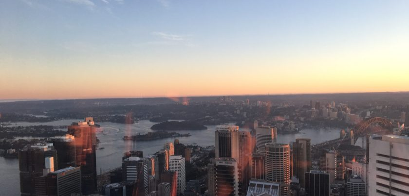 view from sydney tower at sunrise