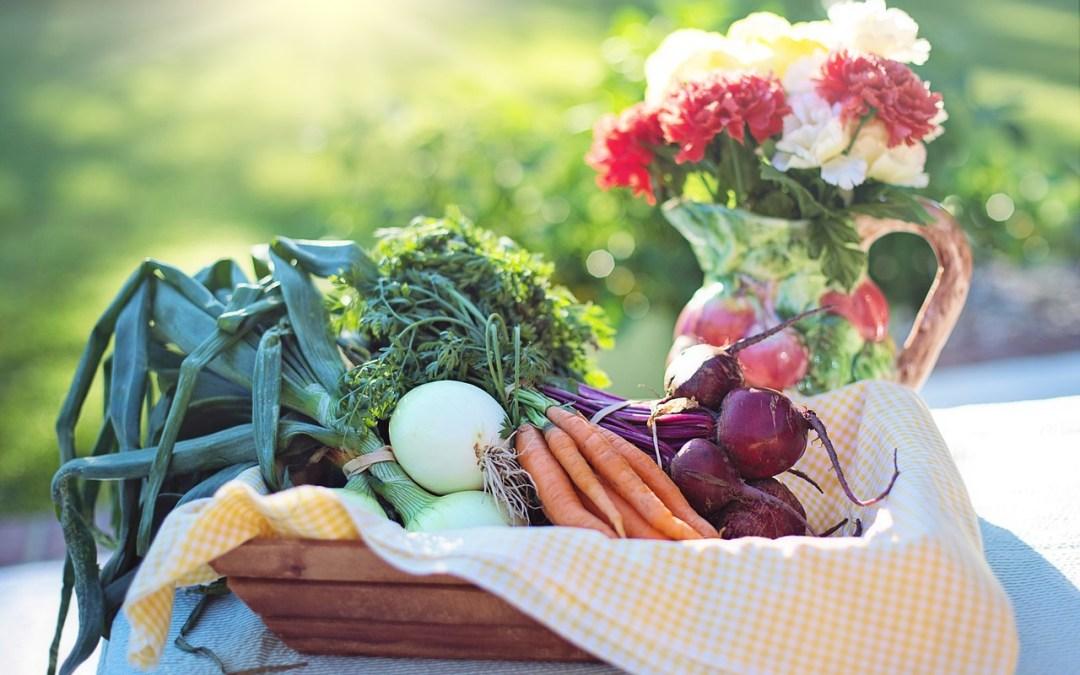 The Ideal Vegetarian-Part 3