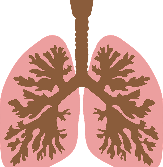 How Acids and Alkalies Affect the Health-part 4