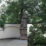 Статуя со спрятанными котиками