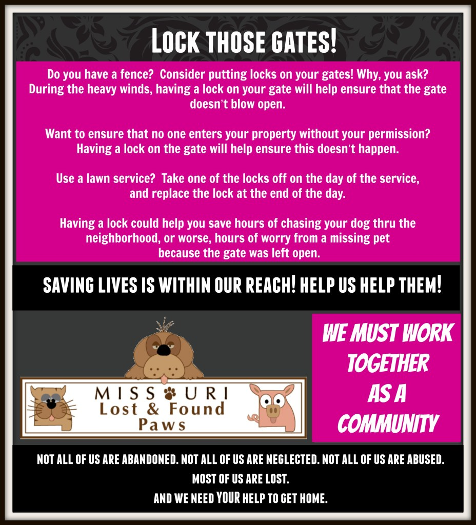 LockGates2015 (1)