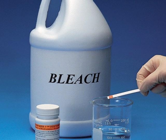 Pregnancy Bleech Test