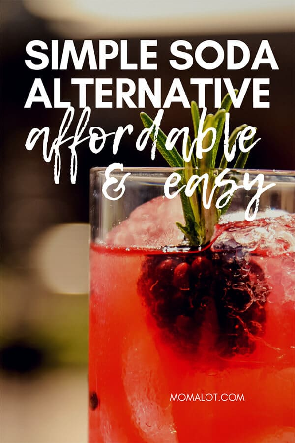 The Super Easy Soda Alternative to Satisfy You & Your Wallet - make this quick drink at home and you won\'t miss soda ever again