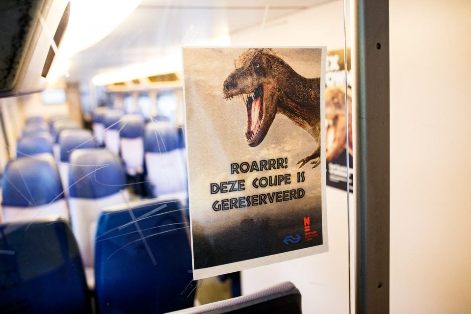 NS T-Rex Express Naturalis