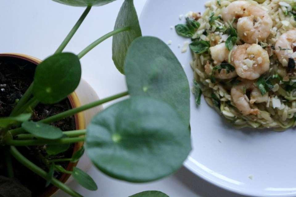 7 snelle Recepten   Orzo met knoflookgarnalen en courgette momambition.nl hellofresh